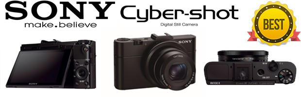 Sony DSC RX100M II Best Low Light Camera